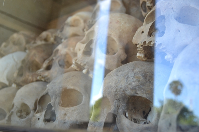 Some of the skulls encased within