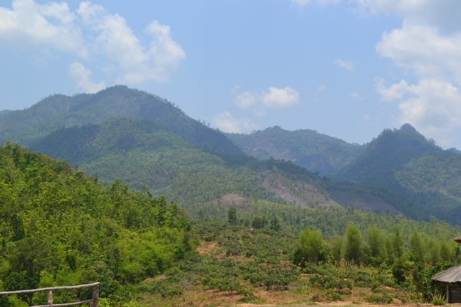 Yun Lai Viewpoint